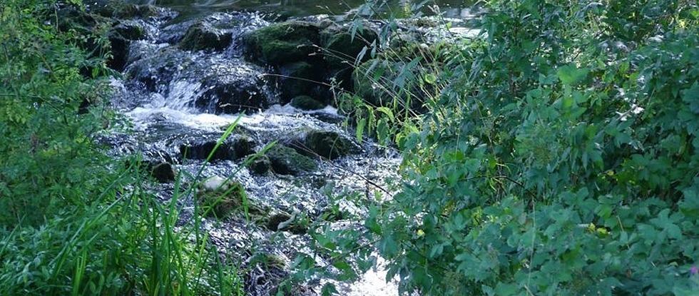LPEFB fb Rock Water - Eau de roche