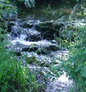 LPEFB gf Rock Water - Eau de roche
