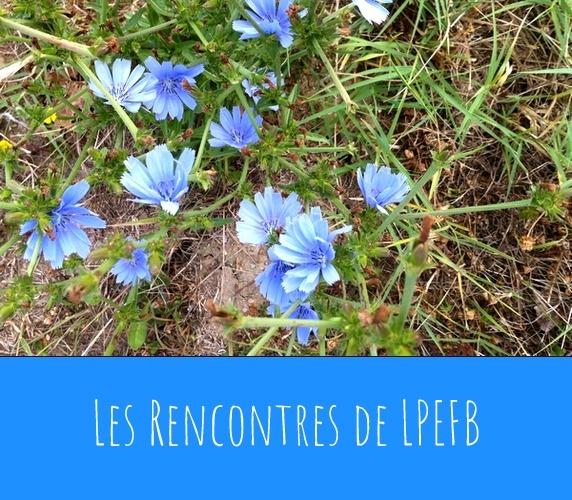 LPEFB Rencontres